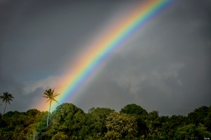 Tropical rainbow on the Big Island, Hawaii